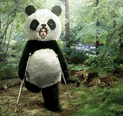 panda handicapé