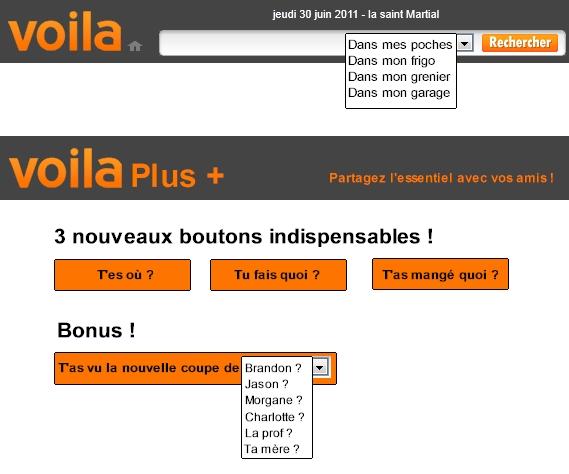 Voila Plus, votre social naitwaurk français